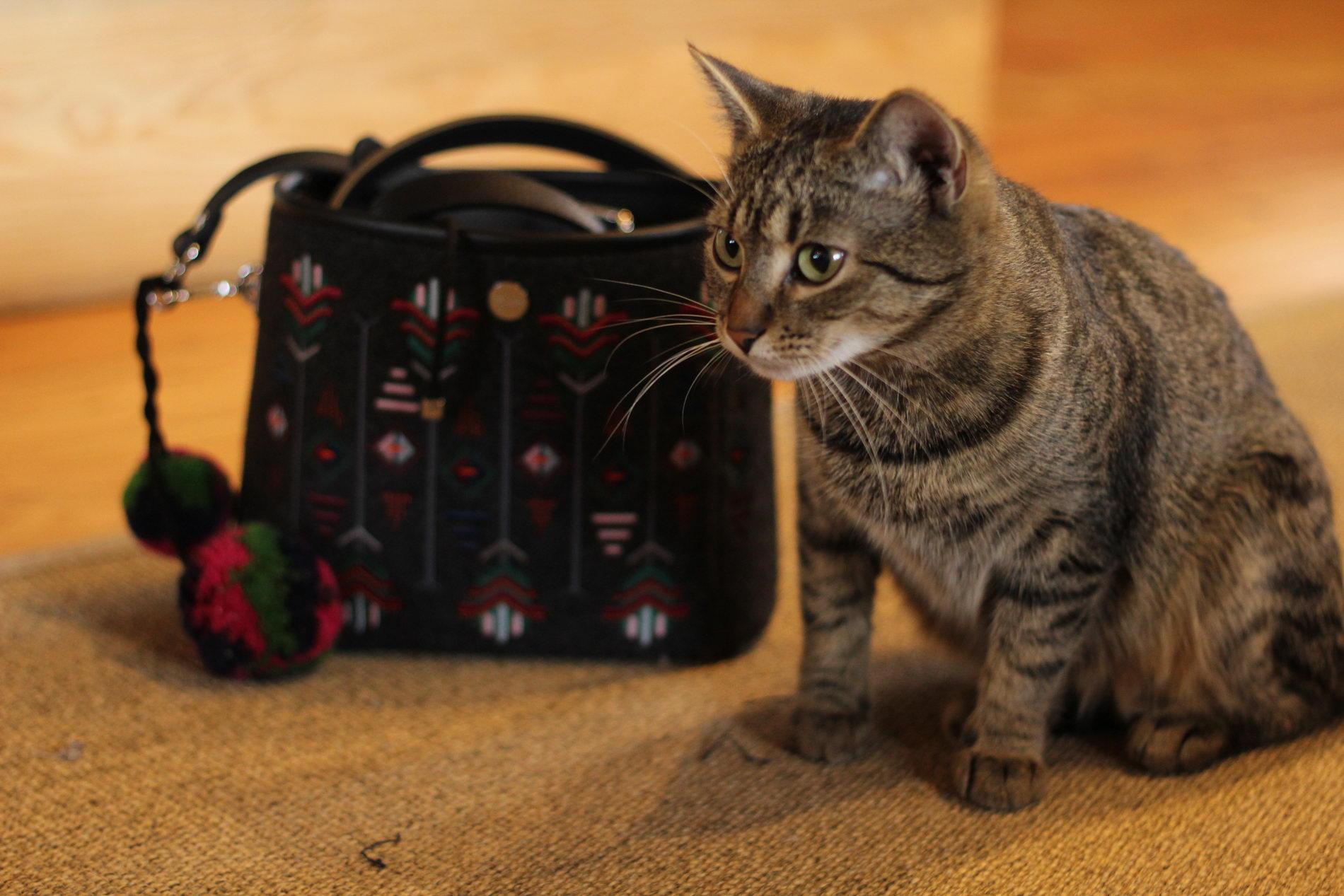 6350d84e20ce4 Na nasz wyjazd w góry zabrałam również dużą, czarną torbę z królikiem. Torba  jest wygodna i bardzo lekka. Wykonana z czarnego, pikowanego materiału.