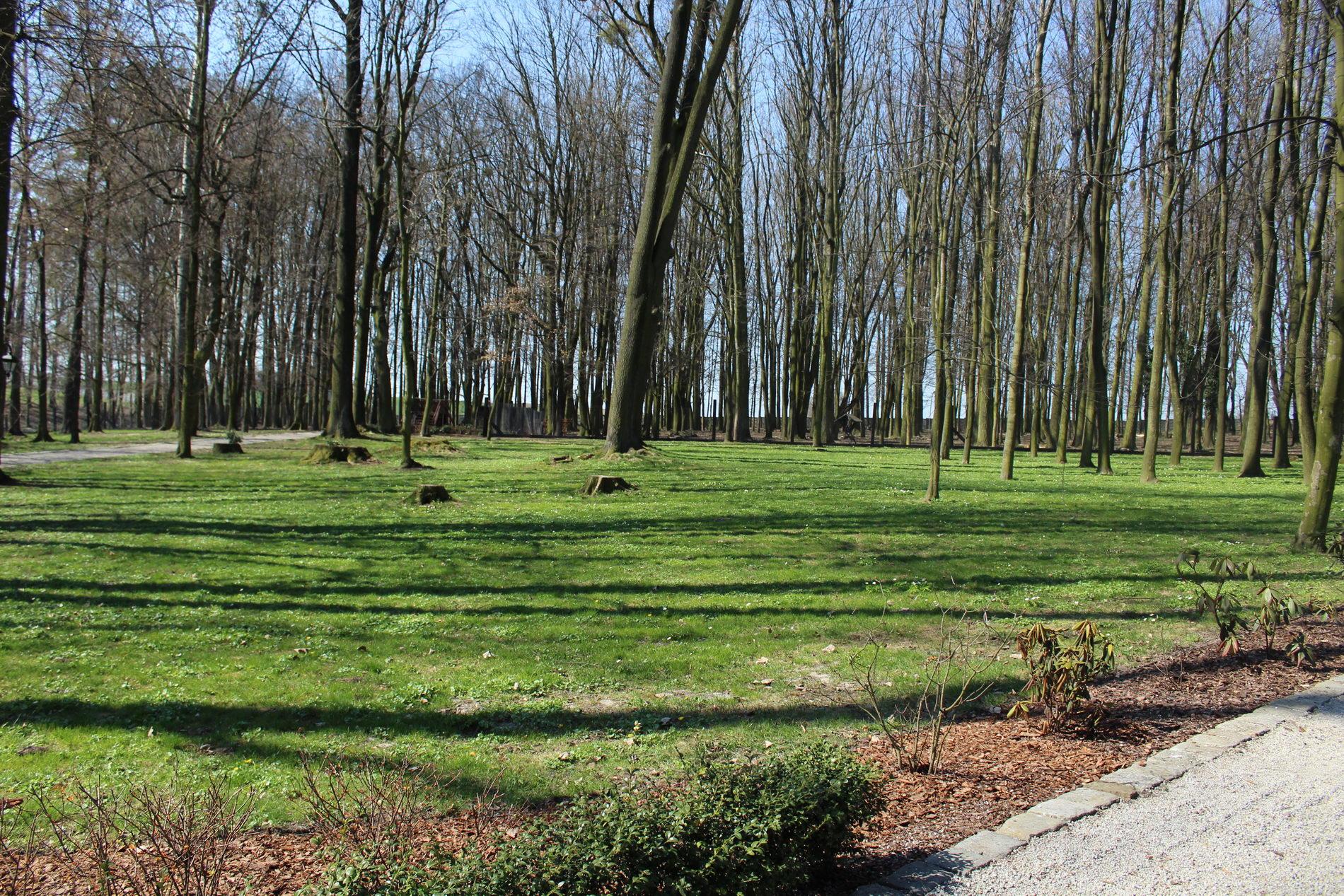 park wilkwoice